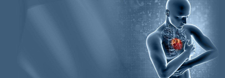 Image en haut du site représentant un homme virtuel transparent avec le cœur apparent, l'home est d'une couleur terne dans les to bleu et le coeur lui est d'un rouge vif.
